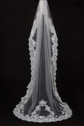 Cathedral Long Floor Length French Lace Trim Appliques Wedding Veil